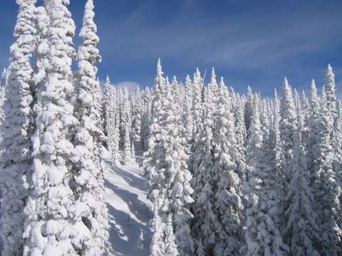 Steamboat Real Estate Home Search Over 10 Feet Of Snow In