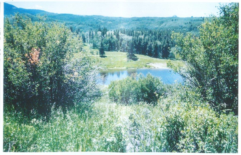 north routt ranch land, steamboat lake land, north routt real estate, steamboat springs real estate, steamboat springs ranch land, steamboat springs land