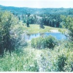 New Listing–Ranch Land in North Routt