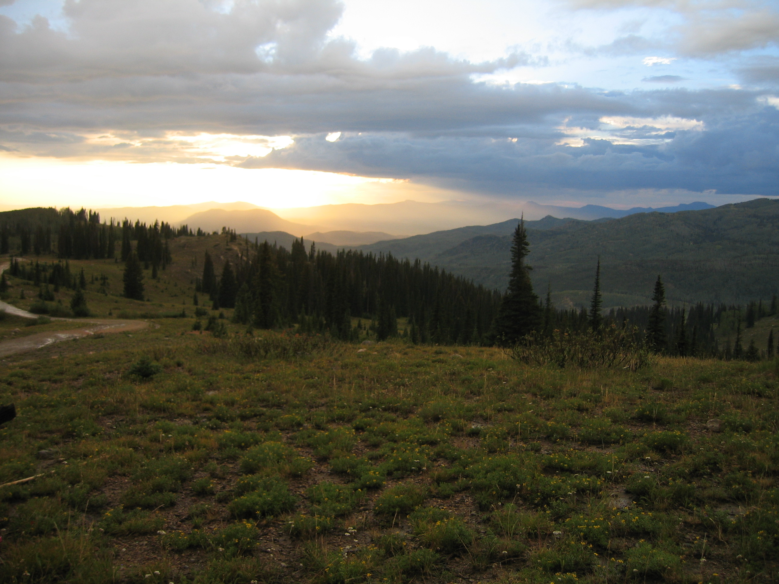 Steamboat Real Estate Home Search Buffalo Pass In Routt