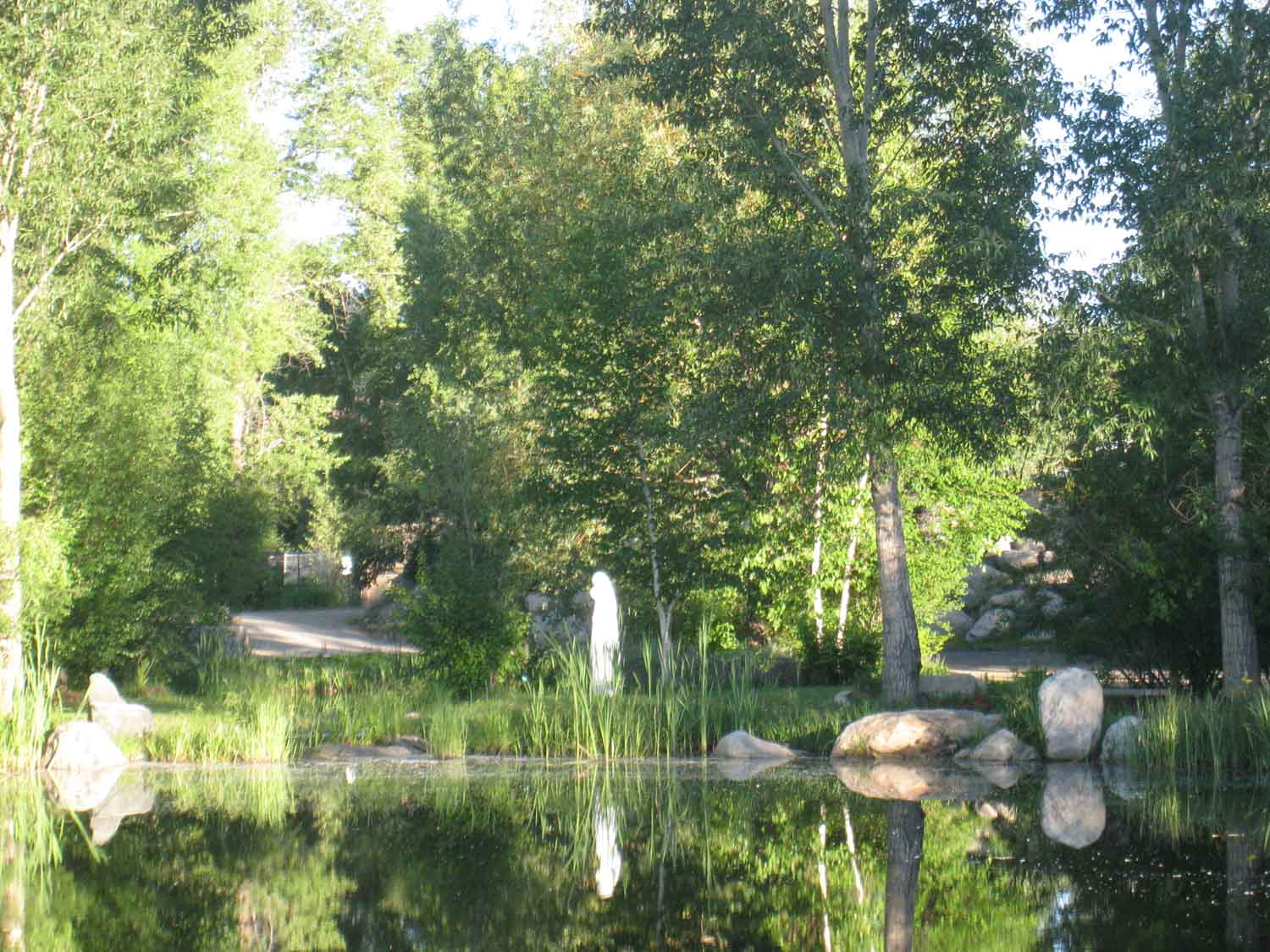 Yampa Valley Botanic Park In Steamboat Springs Co Is A Hidden Gem Steamboat Real Estate Home